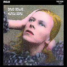 Google Image Result for http://upload.wikimedia.org/wikipedia/en/thumb/4/40/David_Bowie_-_Hunky_Dory.jpg/220px-David_Bowie_-_Hunky_Dory.jpg