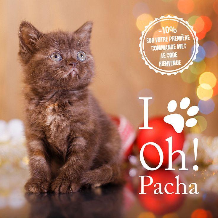 Des idées de cadeaux pour votre Pacha ? -10% sur votre première commande avec le code BIENVENUE. Boutique en ligne : http://www.ohpacha.com/