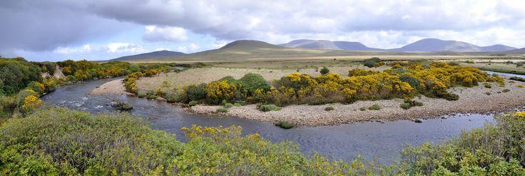 Née des étendues sauvages dominées par la chaine de Nephin Beg, l'Owenduff s'écoule dans une des toutes dernières tourbière oligotrophes actives restées intactes en Europe de l'ouest. Au cœur de ce...