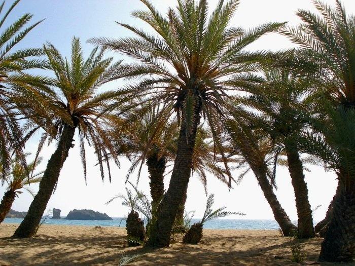 Vai, Crete Island