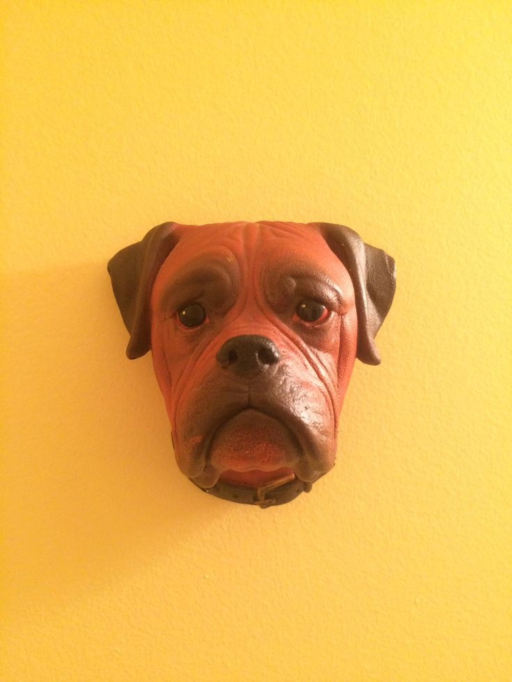 A personal favorite from my Etsy shop https://www.etsy.com/listing/573382189/bossons-boxer-dog-chalkware-1960  #bullyofig #boxerlove #dog #doglover #puppy #petlover #canine #england #boxersofinstagram #pets #bossons #wallart #collector #collection #chalkware #pawrent #pupper #doggo #boxerpuppy #bullybreed #boxerdog #boxerowner #isnmemberitem #sellthispod #boxergram