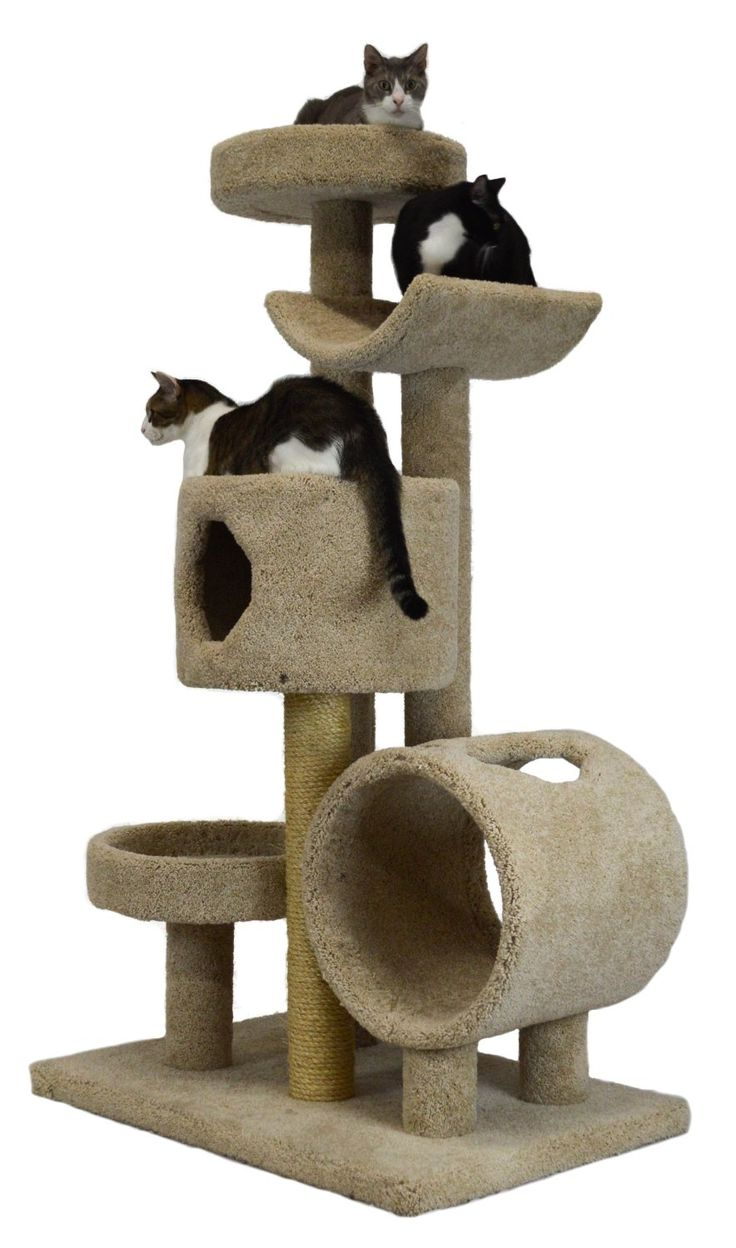 Molly and Friends Wooden Cat Furniture FINDING A GREAT WOODEN CAT TREE