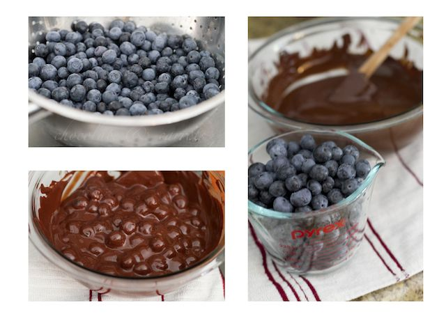 Chocolate Covered Blueberry Drops. Ghiradelli chocolate is not gluten free.