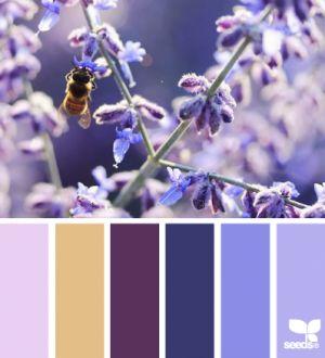 kleurenpalet paars blauw - Google zoeken