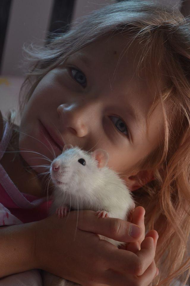 Szczurek w domu, Twój najlepszy przyjaciel