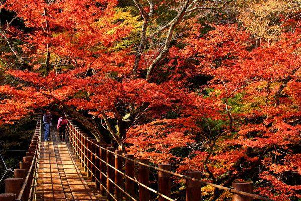 花貫渓谷 Ibaraki