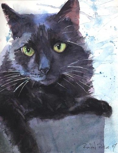 Black Cat Watercolor. signature looks like Rafiel Parker 2007
