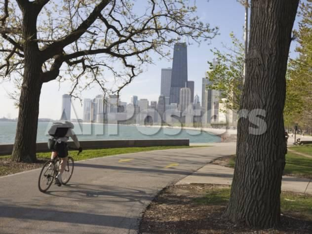 Cyclist by Lake Michigan Shore, Gold Coast District, Chicago, Illinois, USA by Panoramic Images Landscapes Photographic Print - 61 x 46 cm