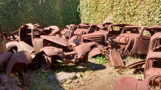Cars are very resiliant it seems. 70 years of weather and they are still mostly recognisable