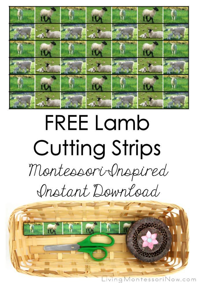 These free lamb cutting strips are a Montessori-inspired instant download - super easy to download and prepare! They're perfect for lamb or farm units for toddlers and preschoolers. Post includes the Montessori Monday linky collection.