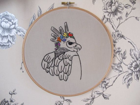Best ideas about harpy eagle on pinterest birds of