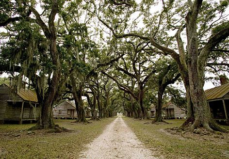 The slave quarters at the Evergreen Plantation in Wallace, La., is on the list of places that Louisiana tourism officials recently unveiled as the first 26 sites on an African American Heritage Trail running from New Orleans to Northern Louisiana.