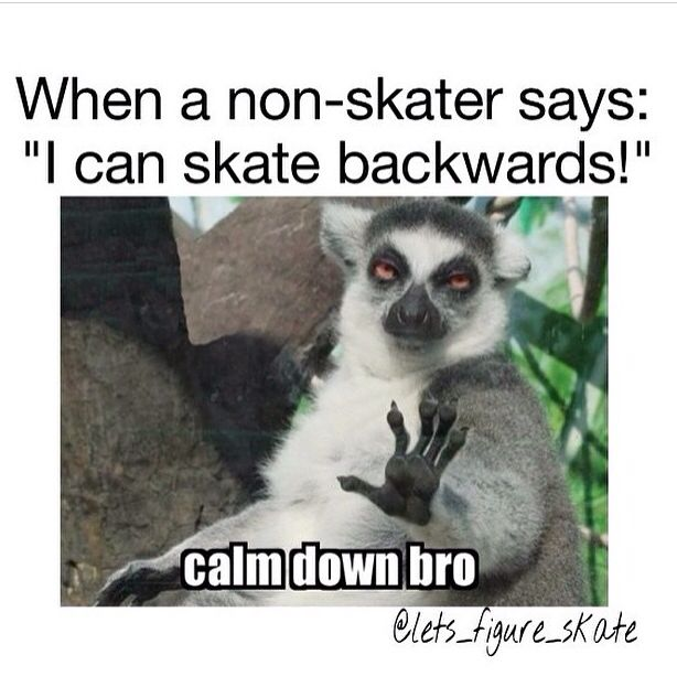 It's funny because whenever my relatives ask me how good I can skate they're all like can you go backwards and I'm just like yep I can go backwards it's not that hard