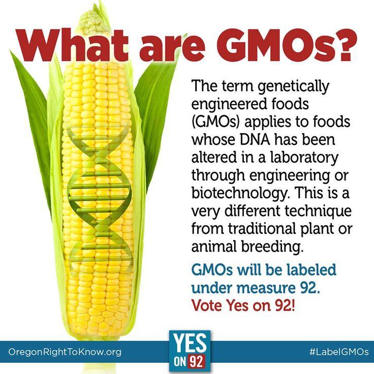 what are gmo s