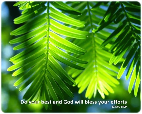 Do your best and God will bless your efforts