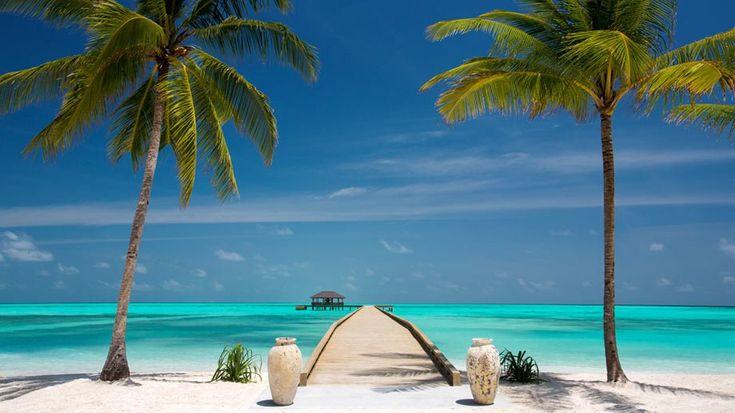 Malediven All Inclusive im Malediven Reiseführer http://www.abenteurer.net/194-malediven-reisebericht/