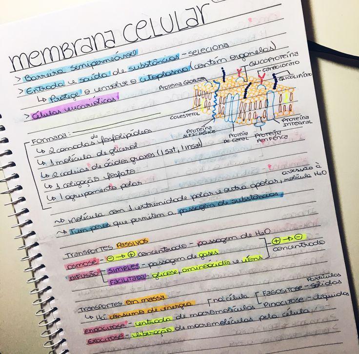 #MembranaCelular #MembranaPlasmatica #Biologia