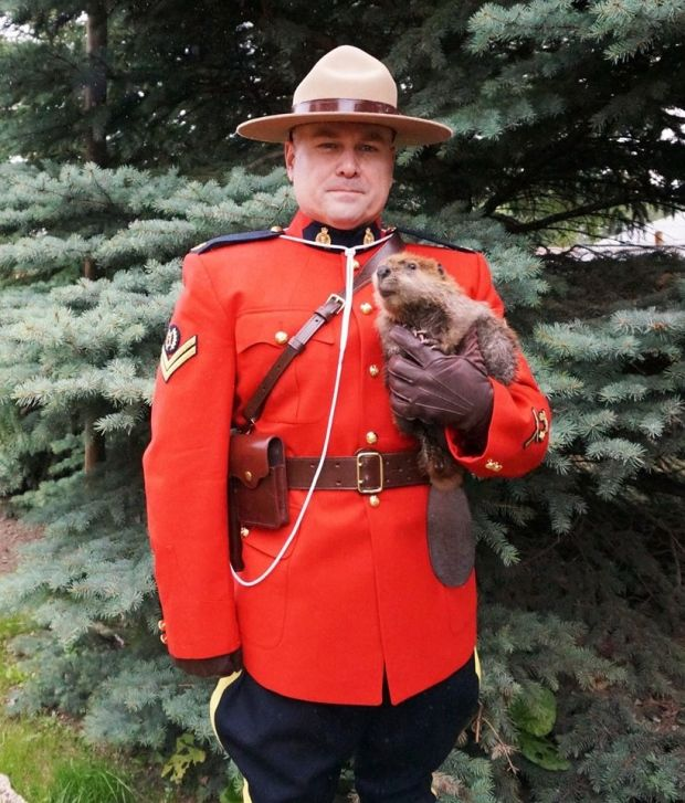 Mountie posing with a baby beaver = One of the most Canadian photos ever