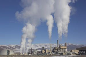 Bioenergy with carbon capture: Scientists set out path for global warming reversal
