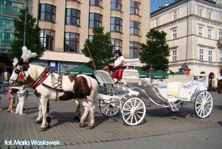 Dorożką po Krakowie (Rynek Główny, Wawel, Kazimierz) http://krakowforfun.com/pl/2/wycieczki/dorozka-po-krakowie