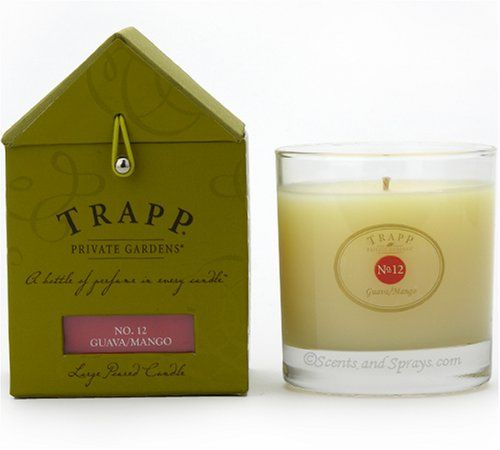 TRAPP No. 12 GUAVA/MANGO LARGE POURED CANDLE