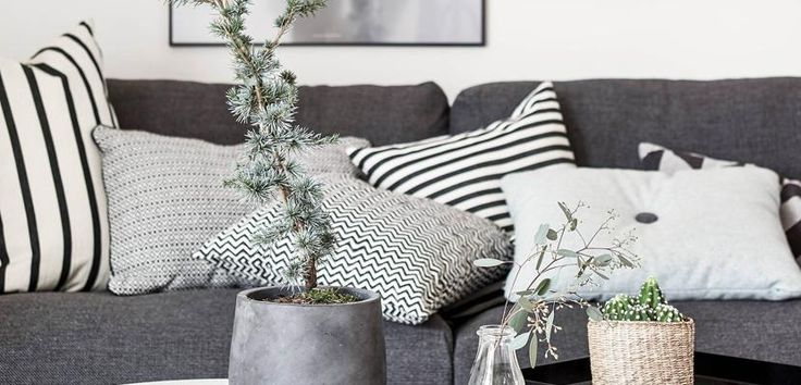 Charming Nordic Space