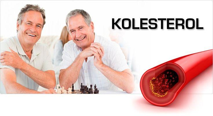 Obat Herbal Kolesterol >> Kolesterol adalah salah satu penyakit yang banyak di alami oleh orang-orang di indonesia, apalagi orang-orang yang tidak bisa menjaga kesehatan nya, mulai dari pola hidup dan pola makan.