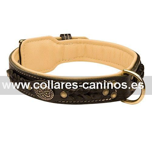 Lujoso collar de diseño extra confort cuero forrado con la piel y decorado con tachuelas y