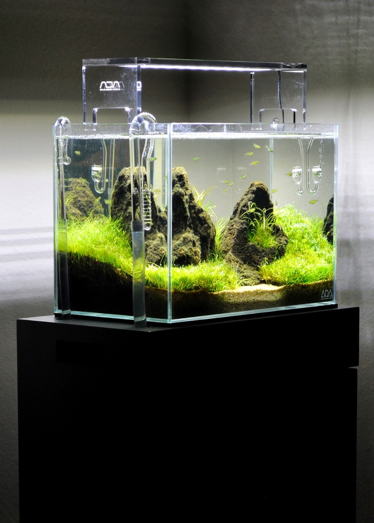 Ada mini aquarium aquasky led lightning lily pipes and for Co2 fish tank