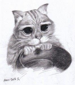 Dibujos a lapiz de gatos (2)
