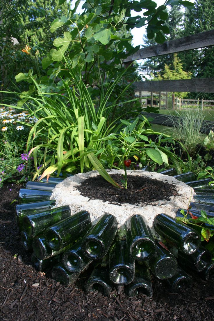 Wine Bottle Planter - The idea is simple: the sunlight warms up the air inside the glass and expands.   The heated air is pushed through the bottle neck into the soil warming it, and the plant growing in the soil.