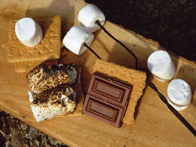 Campfire Smores: Smore Summer, Free Smore, Favorite Things, Free Food, Campfires Smore, Night Smore, Gluten Free, Summer Night, Camps Food