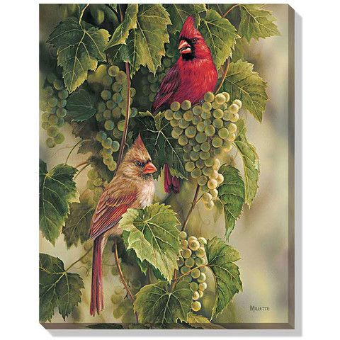 Vineyard – Cardinals Canvas Art Print by Rosemary Millette F593790426 – Baubles-N-Bling