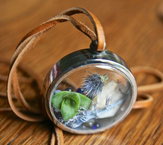 OOAK miniature round terrarium locket with live succulent by Flower Power Nation on Etsy, $42.00