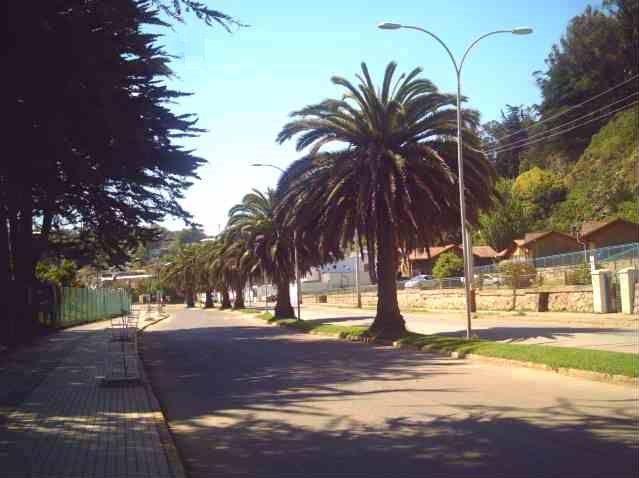 Av. Enrique Mac Iver, que conecta la ciudad con la Celulosa y la playa.