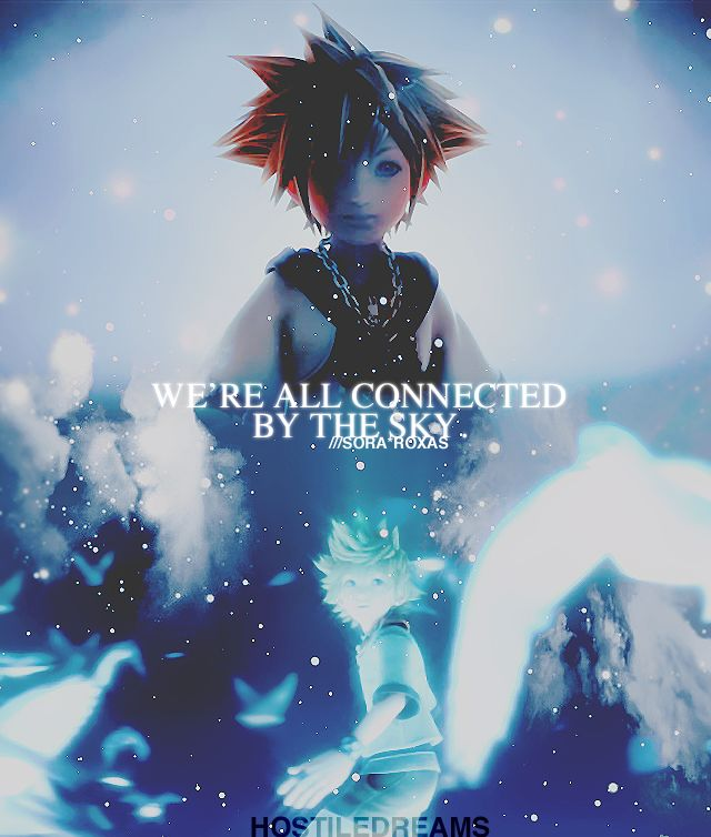 Kingdom Hearts- My favorite game series for a reason. So true, we do all share one Sora