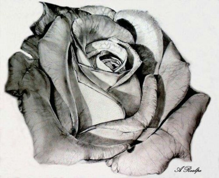 Rose sketch crafts pinterest beautiful mothers and for Pretty rose drawings