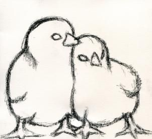 how to draw baby chickens, realistic chicks step 3