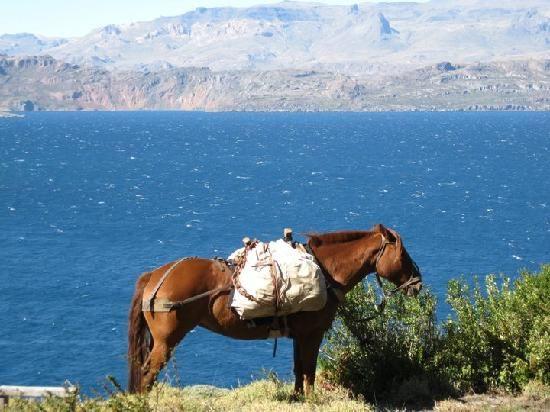 Coyhaique, Chile.........where my Alex was born.......(Patagonia)