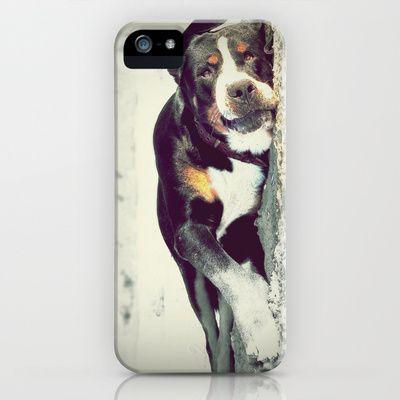 Lazy Swiss Mountain dog photography  iPhone 5/5s cover $35.00