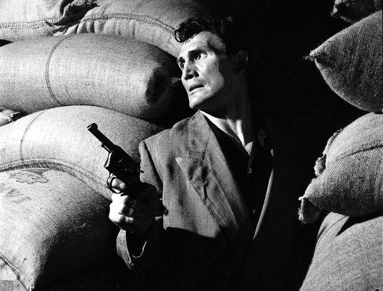 Jack Palance in Panique in the street  1950