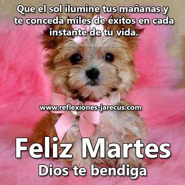 Feliz Martes - Dios te bendiga