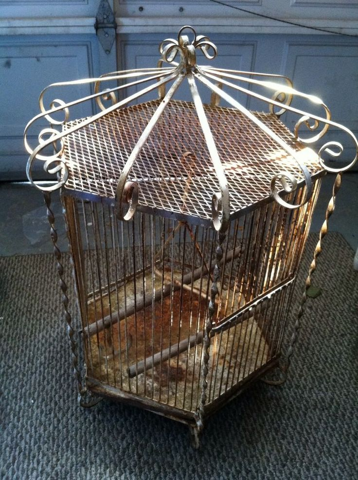 766 best bird cages images on pinterest vintage birds for Cage a oiseau decorative