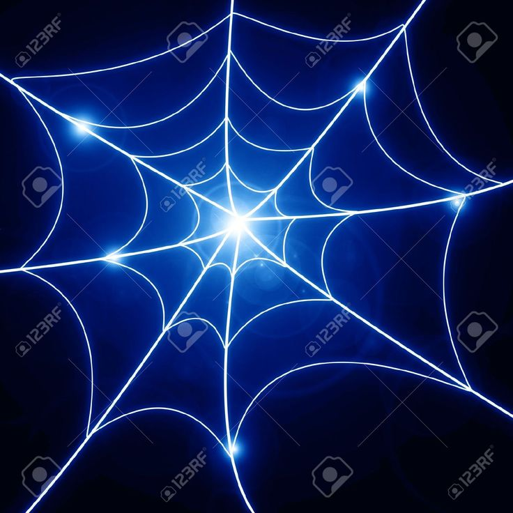 Spider Web Stock Vector Illustration And Royalty Free Spider Web ...