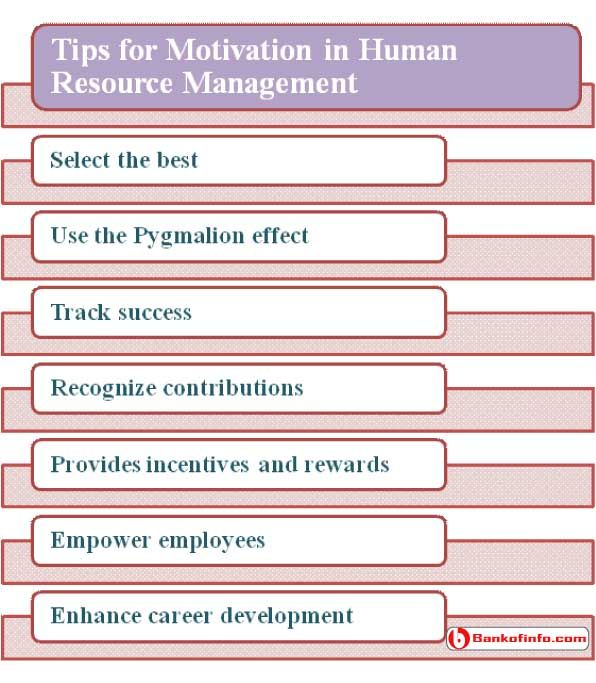 motivational theories in human resource management Businesses are interested in motivational theory because motivated individuals  are more productive, leading to more economic use of resources.