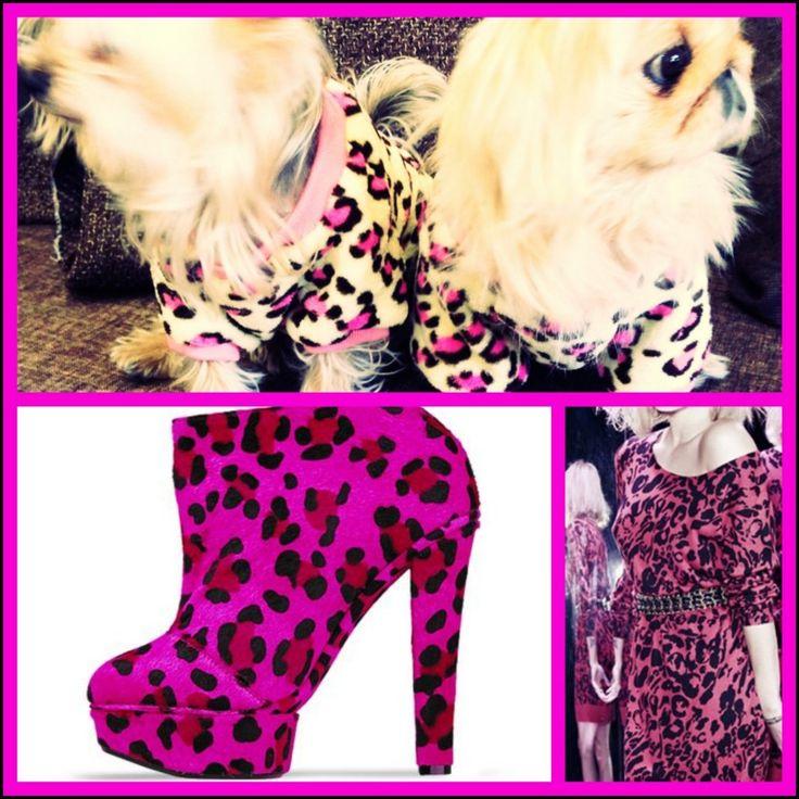 Trend Alarm - Leopard is on the way to Nirvana... köpek minderi köpek yatakları köpek yatağı petshop köpek malzemeleri kopek kıyafetlerı köpek kıyafetleri kopek elbıselerı köpek elbiseleri kopek elbise köpek elbise dog clothes köpek modası kopek modası dog fashıon köpek için kıyafet kopek ıcın elbise köpek için elbise köpek paltosu köpek montu köpek ceketi köpek tişörtü KÖPEK KIYAFETİ KÖPEK ELBİSESİ KÖPEK ÜRÜNLERİ KÖPEK ÜRÜNÜ KÖPEK GİYİM www.kemique.com
