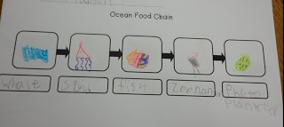 The ocean food chain for students to fill in.