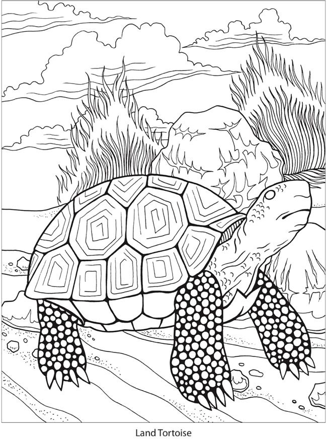 449 best Dover coloring images on Pinterest | Coloring books ...