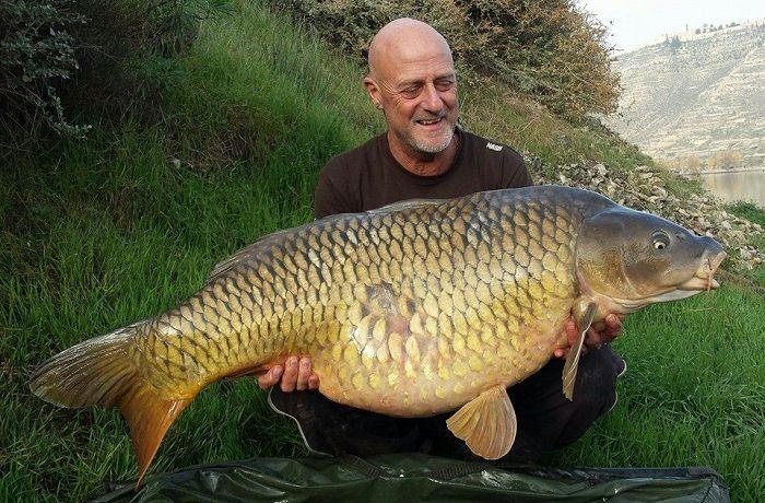 63lb 4oz Common Carp - River Ebro - This huge 63lb 4oz specimen equals the River Ebro common carp record and was banked by globetrotting angler Martin Hodgkinson.  During a week-long t... Check more at http://carpfishinglakes.com/63lb-4oz-common-carp-river-ebro/