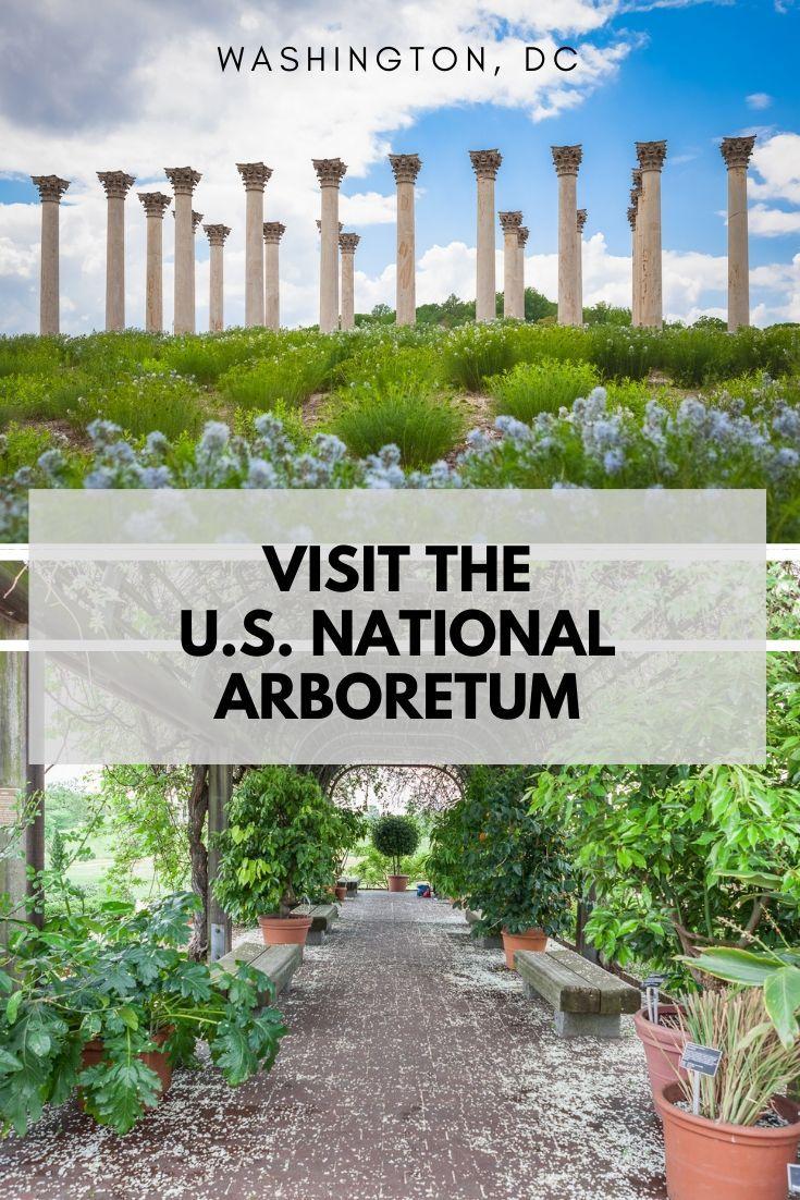 Visit The U S National Arboretum Botanical Gardens Arboretum Garden Lovers